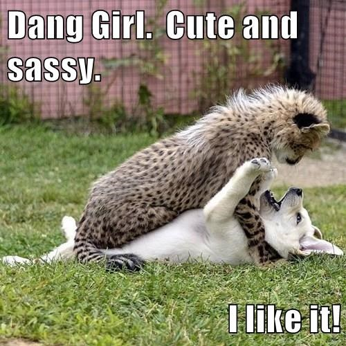 Dang Girl.  Cute and sassy.  I like it!