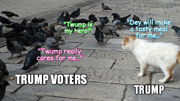 What Trump really thinks about the misguided people who support him!