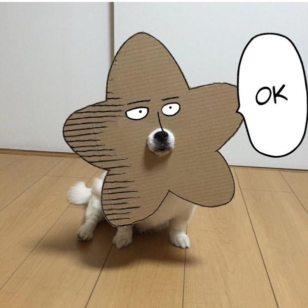 Animated cartoon - OK