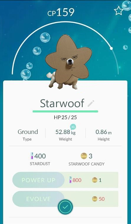 Text - CP159 Starwoof HP 25/25 52.88 kg Ground 0.86 m Туре Weight Height 400 3 STARDUST STARWOOF CANDY POWER UP 800 1 EVOLVE 50