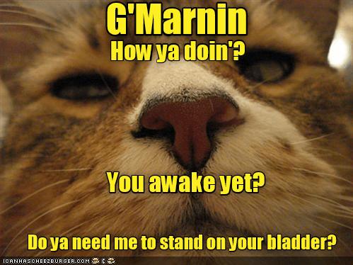 G'Marnin