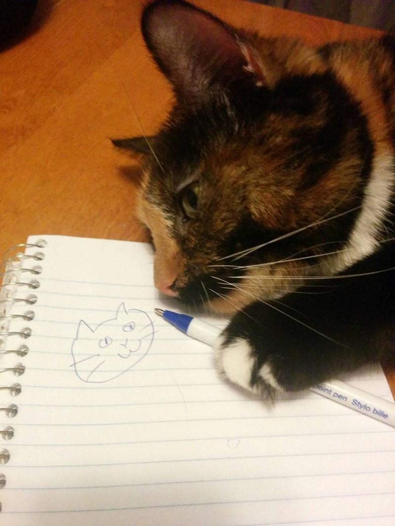 Cats self portrait - 8986001920