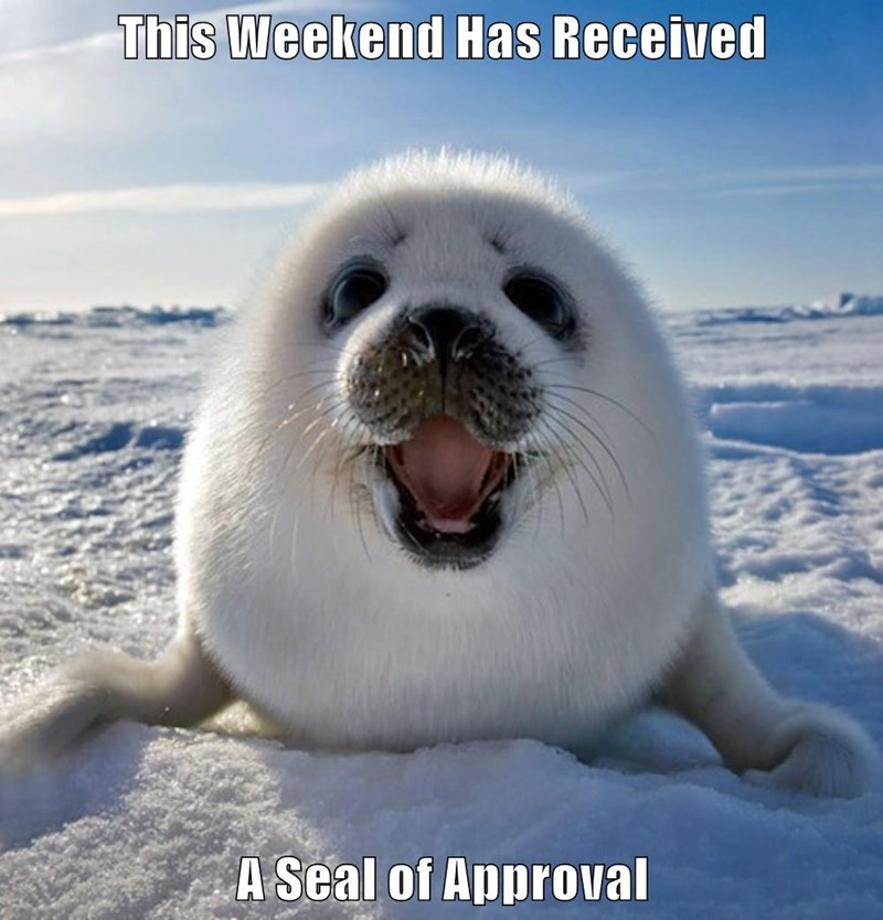 This Weekend Has Received   A Seal of Approval