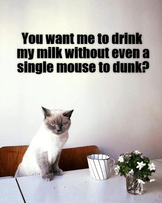Milk & mice