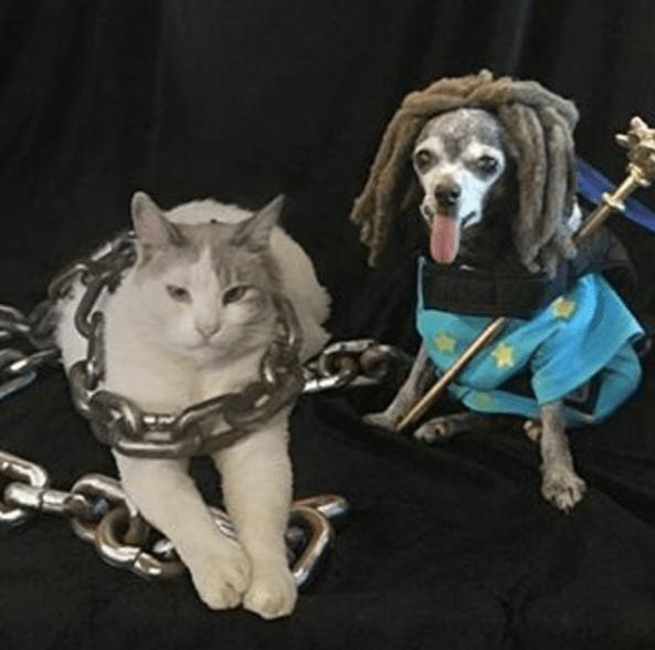 twd ezekiel pets cosplay