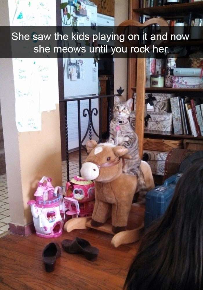 Funny cats snapchat of kitty riding the horse toy like the kids did.