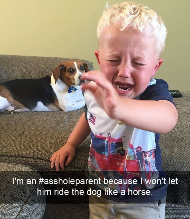Kid crying because he was not permitted to rid the dog like a horse.