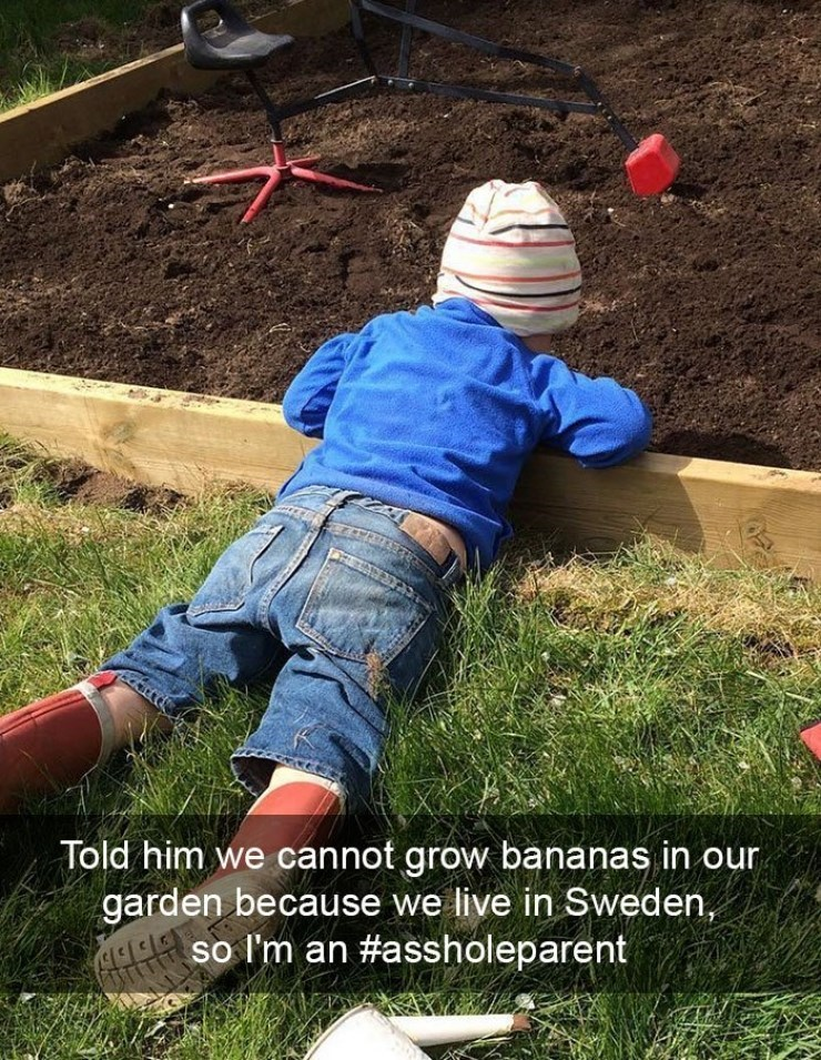 Kid mad because parent won't let him grown bananas in garden because they live in Sweden.
