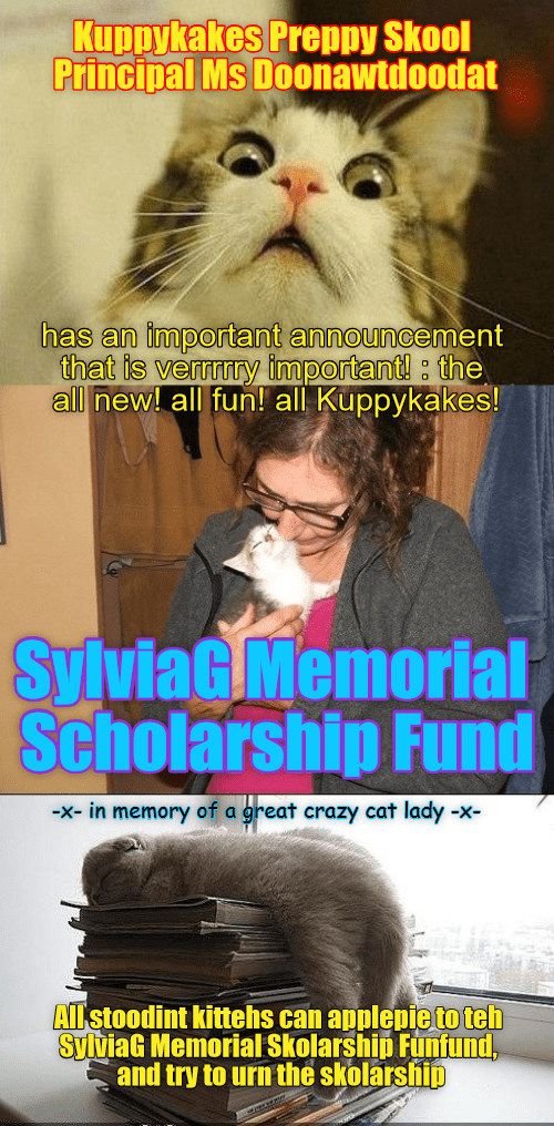 fund,memorial,kuppykakes,caption,sylviag,Cats,scholarship