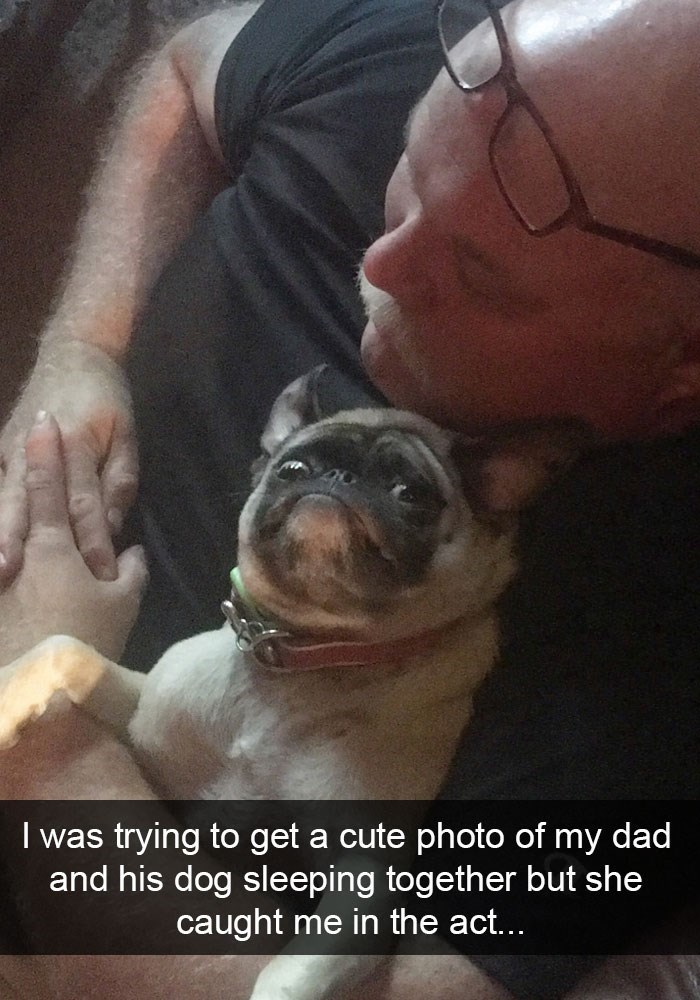 Funny Snapchat of a woman trying to get a photo of the dog and dad sleeping but the dog ruined it.