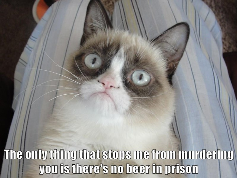 The only thing that stops me from murdering you is there's no beer in prison