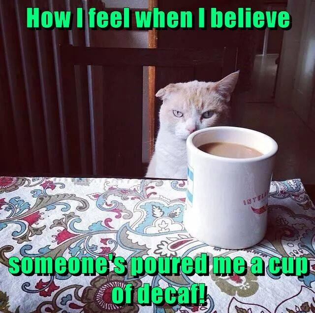 How I feel when I believe someone's poured me a cup of decaf!