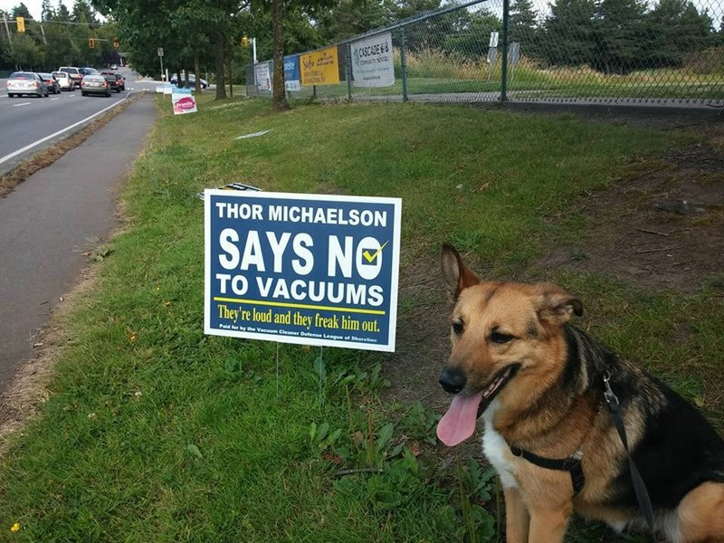 if dogs could vote