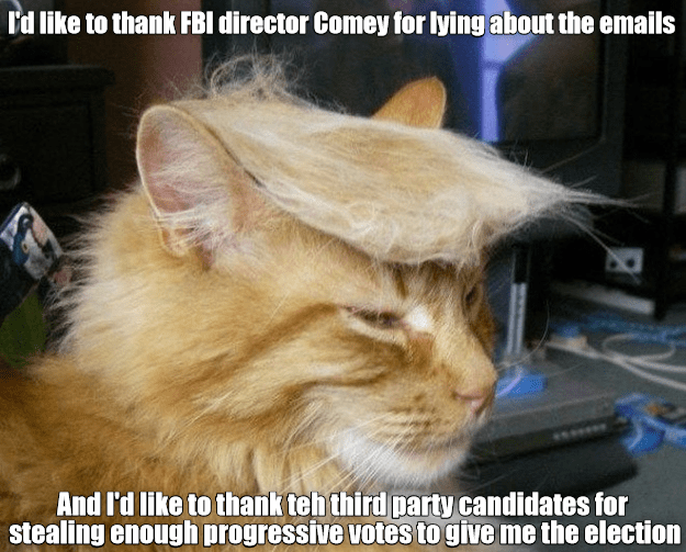 FBI cat votes director stealing lying emails caption comey thank progressive - 8988668928