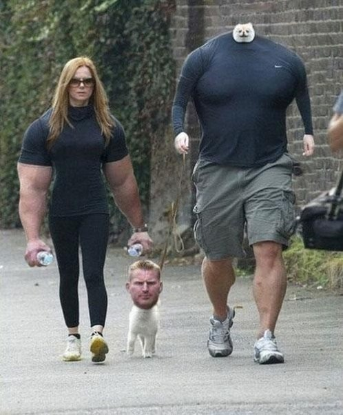dogs,arms,face swap,image