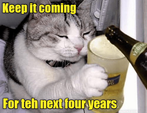keep cat next it four years caption coming - 8989127936