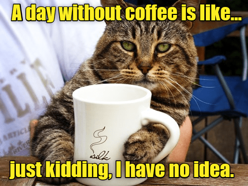 I MUST Have My Coffee