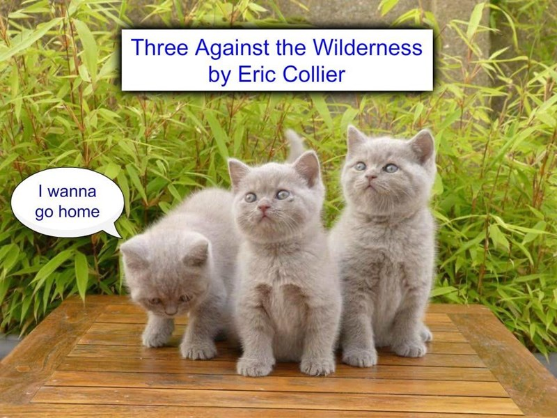 """Three Against the Wilderness"" by Eric Collierb  (recaption: http://tinyurl.com/zcrqnnq"