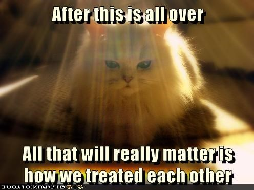 cat matters after over treated other each all - 8989645824