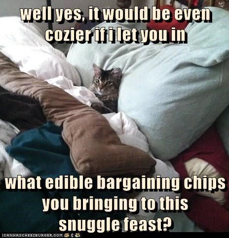 well yes, it would be even cozier if i let you in what edible bargaining chips you bringing to this snuggle feast?