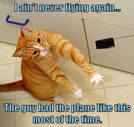 like cat again never aint plane guy caption this flying - 8989661696