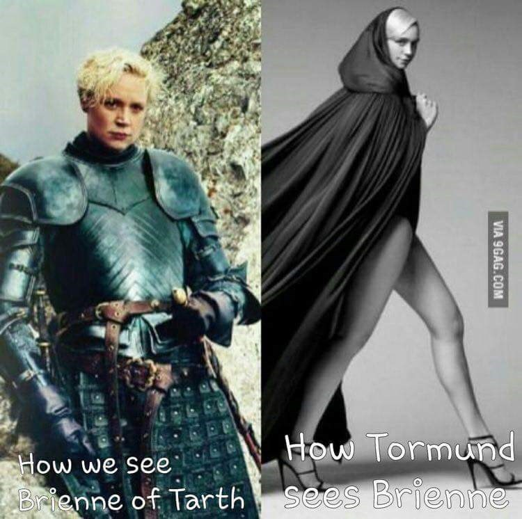 how-we-see-brienne