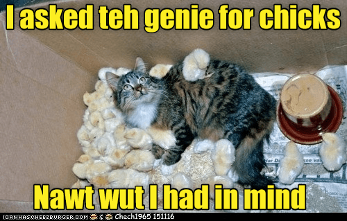 asked cat chicks genie caption - 8989875200