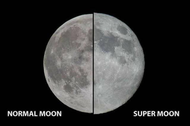 moon - 8990017792