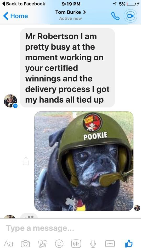 Canidae - Back to Facebook 5% 9:19 PM Tom Burke> Home Active now Mr Robertson I am pretty busy at the moment working on your certified winnings and the delivery process I got my hands all tied up POOKIE Type a message... Aa GIF