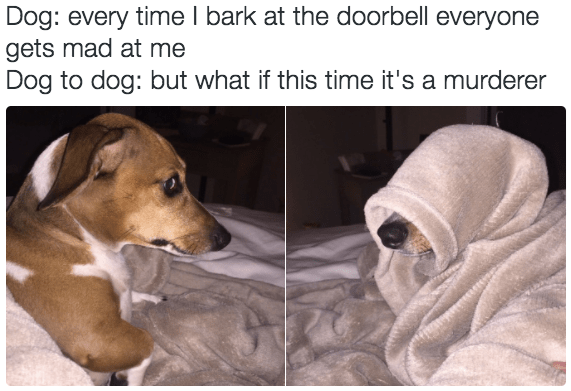 dogs barking Memes evil kermit