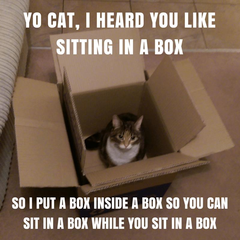 box Cats Memes yo dawg - 8990632704