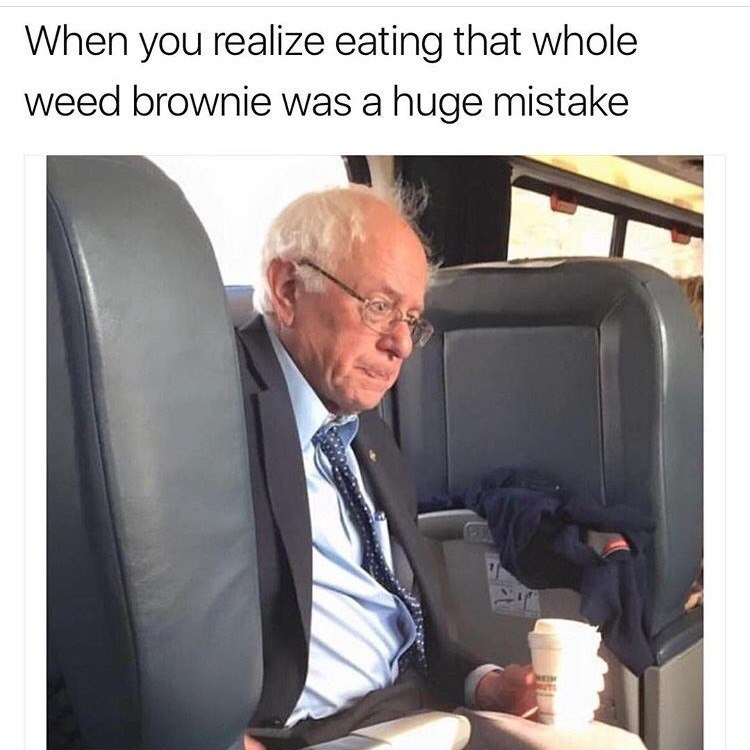 drugs,bernie sanders,brownies,image