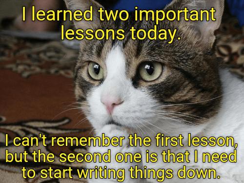 i forgot lesson cat meme - 8990815744