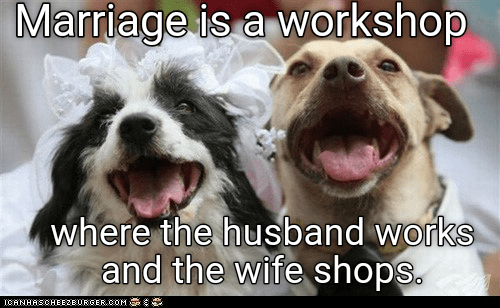 dogs marriage workshop caption