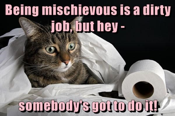 Being mischievous is a dirty job, but hey - somebody's got to do it!