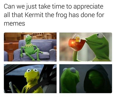 kermit the frog Memes image - 8991043584