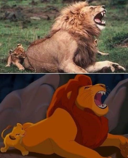 lion king - 8991046656