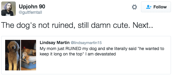 "Text - Upjohn 90 @gultfemtall Follow The dog's not ruined, still damn cute. Next.. Lindsay Martin @lindsaymartin15 My mom just RUINED my dog and she literally said ""hee wanted to keep it long on the top"" I am devastated"