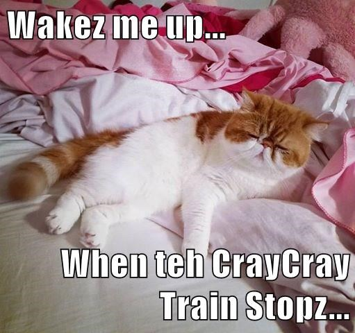 Wakez me up...  When teh CrayCray Train Stopz...