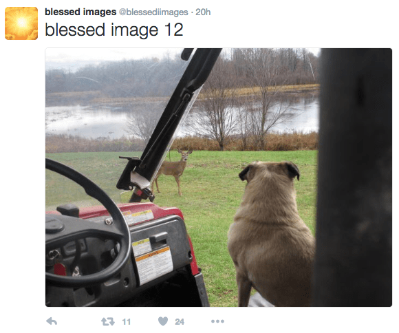 Vehicle door - blessed images @blessedimages 20h blessed image 12 111 24