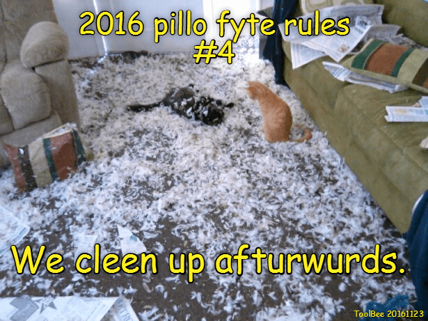 2016 pillo fyte rules