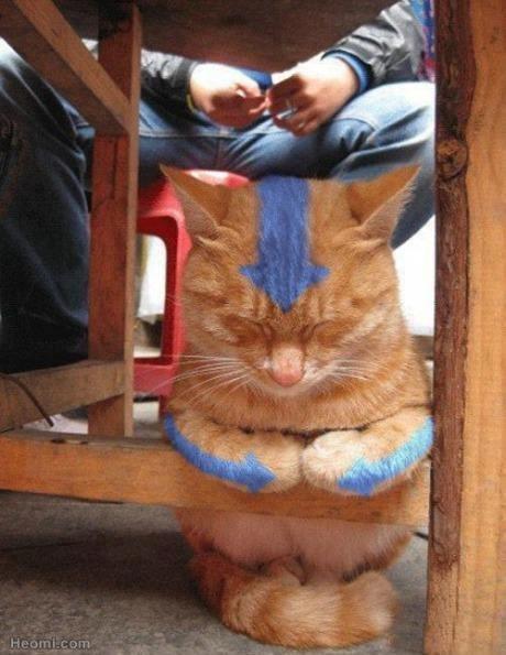 catatar