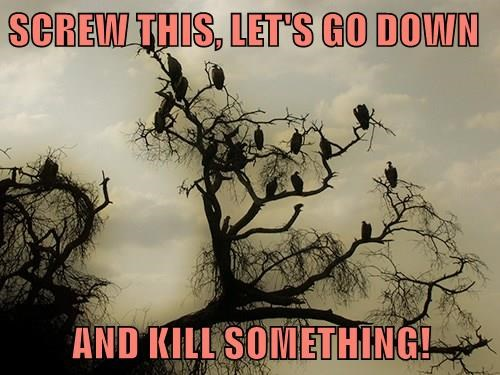 SCREW THIS, LET'S GO DOWN  AND KILL SOMETHING!