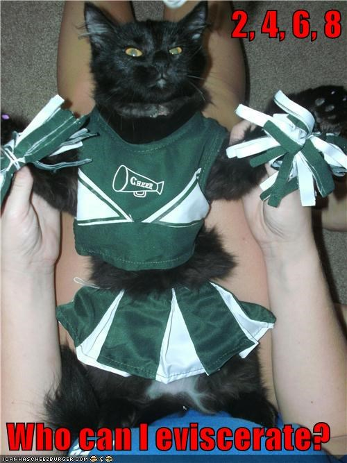 basement cat,cheer,eviscerate,caption