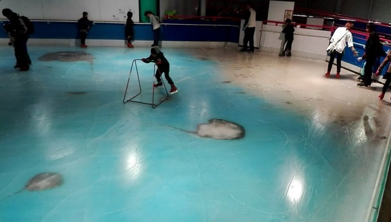 japanese ice skating rink filled with dead fish closed after complaints