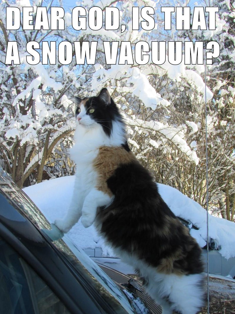 DEAR GOD, IS THAT A SNOW VACUUM?