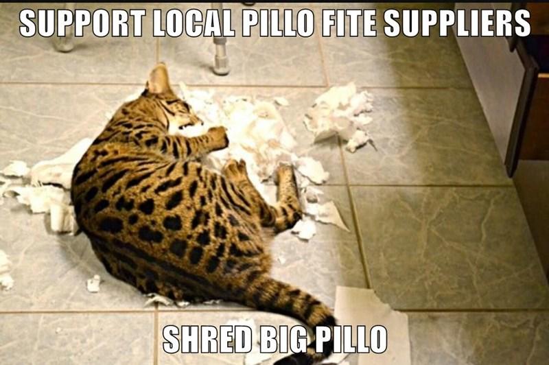 SUPPORT LOCAL PILLO FITE SUPPLIERS  SHRED BIG PILLO