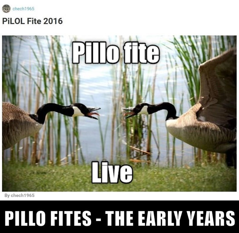 PILLO FITES - THE EARLY YEARS