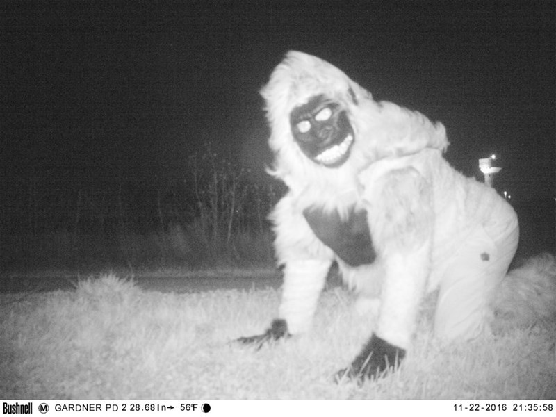 Police in Gardner Kansas Take Wildlife Photos Catch Weirdos in Costume on Camera