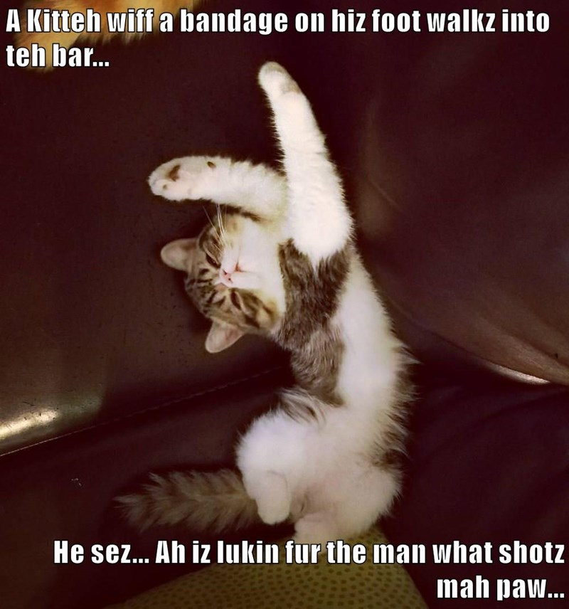 A Kitteh wiff a bandage on hiz foot walkz into teh bar...  He sez... Ah iz lukin fur the man what shotz mah paw...